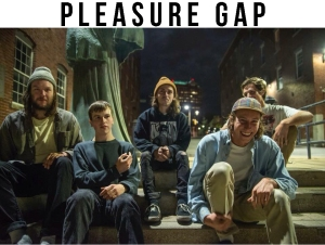 Pleasure Gap